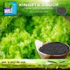 Kingeta Fertilizer Bamboo Charcoal Soil Conditioner Improve Soil Micro-Flora