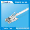 20*400 / 20*1500mm Ss Ratchet-Lokt Cable Tie for Hose Bundling