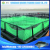 Flexible HDPE Pontoon Cubes Deep Sea Ocean Fish Cage Floating Made in China