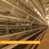 Layer chicken cages for chicken farm for Sri Lanka