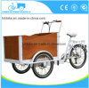 New Design Cargo Bike for Sale Adult Tricycle