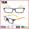Ynjn Hot Sale New Design Custom Logo Tr90 Eyeglasses (YJ-G52022)