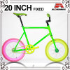 Many Color 20 Inch Fixed Gear Bicycle for Lady (KB-RD20-3)
