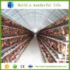 Prefab Steel Structure Poultry Farm Shed Design
