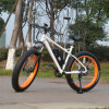 26inch Mountain E Bike with Fat Tire