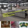 Automatic Thermoforming Vacuum Packaging Machine/Packing Machine