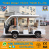8 Seater Tourist Coach Sightseeing Car