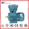 Three Phase Electric Explosion Proof Induction Motor Wth Customized Frequency