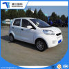 New Model Electric Car with Ce Certifications