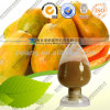 Natural Papaya Extract/ 10% Papain