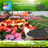Kingeta Carbon Based Organic Fertilizer Improve Soil Micro-Flora
