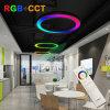 1.2m/1.5m Diameter RGB+CCT LED Pendant Ring Light with Synchronized Control