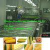 Full Automatic Vegetable Quick Freezing Production Line Spiral Blanching