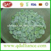 IQF Frozen Broad Bean with Skin