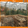 Polycarbonate Sheet Greenhouse Picking Garden