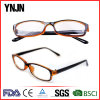 Ynjn Own Design High Quality Wholesale Eyewear Frame (YJ-27874)