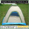 Second Hand Travel Game Straight Cheap Camping 2 Person Tent