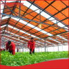 Hanergy 30kw PV Agricultural Greenhouse with Solar System for Sale