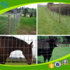 Steel Wire Braided Mesh Horse Fencing