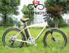 Harley New Model Fat Tire Mountain Electric Bike