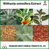 Withanolides From Ashwagandha /Withania Somnifera Extract for Antioxidant