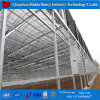 Commercial Large Size Hydroponics Film Green House for Tomato