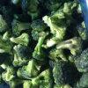 Supplying IQF Frozen Broccoli Florets