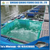 Pontoon HDPE Square Catfish Farming Net Cage
