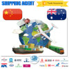 Professional Reliable China Freight Forwarder to Australia