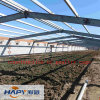Steel Construction in Poultry House with Installation