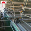 China Poultry Farm Equipment Layer Chicken Cages