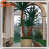 Professional Supplier Decorative Artificial Bonsai Palm Tree