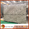 Imported Light Grey Granite Slab for Kitchen Countertop
