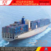 Shenzhen Guangzhou to Tokyo Japan Container Cargo Shipping agent service