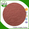 Water Soluble Fertilizer NPK Powder 25-16-5 Fertilizer