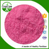 Water Soluble Fertilizer NPK Powder 17-6-8 Fertilizer