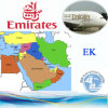 Logistic Service, Air Transport, Shipment by Ek Airline (Europe)