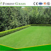 CS Synthetic Grass Decoration From Forest Grass