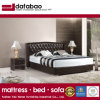 Modern New Design Bed for Bedroom Use (FB3072)