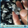 China Competitive Price of Roller Bearing with Retainer (KR19 CF8)