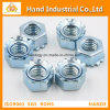 "Stainless Steel Top Quality Ss 304 5/16"" Kep Nut"