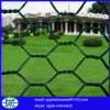 China Factory High Quality Hexagonal Wire Netting