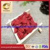 Dried Goji Berry From China