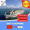 Cheap Sea Freight From China to Port of Argentina