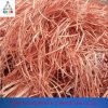 Supplier Recommendation High Quality Copper Scrap Wire for Electronic Industry, From China