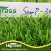 Artificial Grass for Leisure Ground with Top Quality