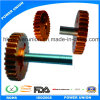 Phosphor Bronze Brass Transmission Spur Gear for Industrial Robots