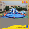 Surfing Water Park Hugh Inflatable Slide and Big Inflatable Pool (AQ01229)