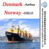 """Ocean Shipment to Aarhus (Denmark) ; Oslo (Norway) -20""""/40"""" Container"""
