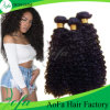 Competitive Price Brazilian Remy Hair 7A Human Hair Curly